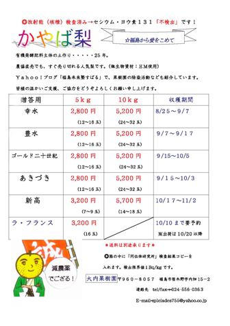 2011_ouchi_nashi
