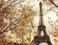 autumn_paris1.jpg