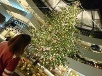 夜歩き クリスマスツリー
