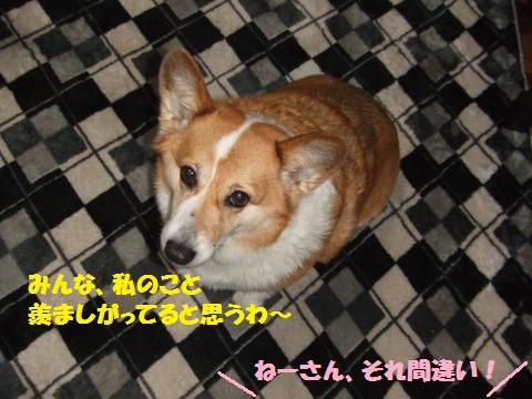 002_convert_20130404232058.jpg