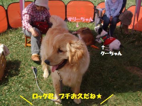 003_convert_20130527011059.jpg