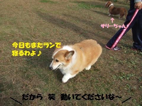 005_convert_20141215005726.jpg