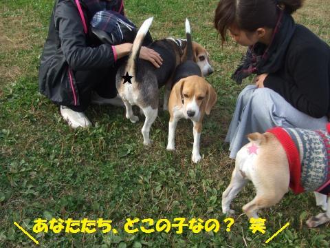 008_convert_20141215005554.jpg