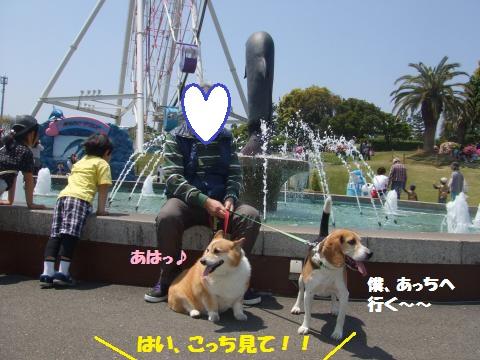017_convert_20130515014143.jpg