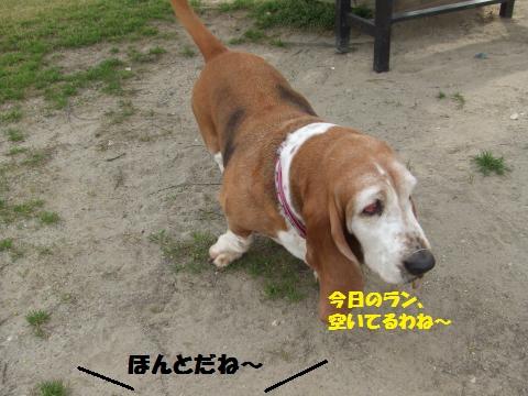 018_convert_20130420061136.jpg