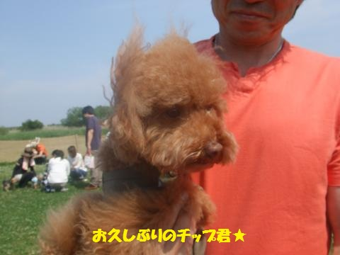 019_convert_20130527012036.jpg