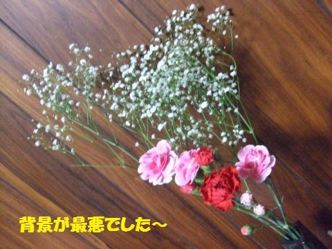 037_convert_20130420061856.jpg