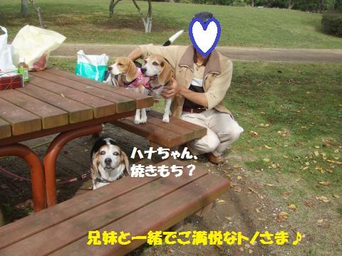 056_convert_20141115071244.jpg