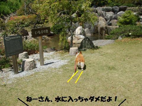 146_convert_20130510014042.jpg