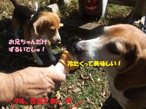 199_convert_20141204063248.jpg