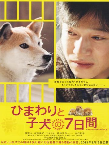 himawari500_convert_20130401022102.jpg