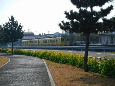 DSCN4841.jpg