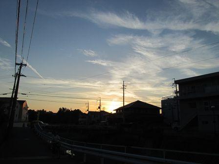 IMG_1548.jpg