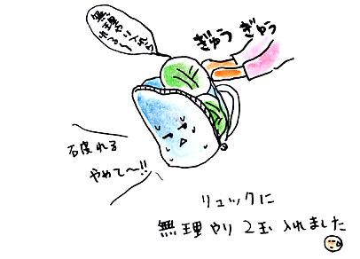IMG_0001_20121018094800.jpg