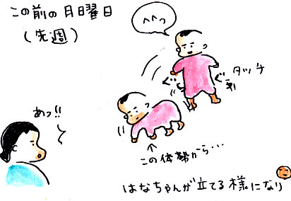 IMG_0001_20121029145911.jpg