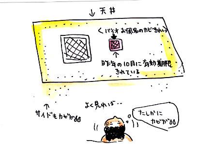 IMG_0002_20121128152637.jpg