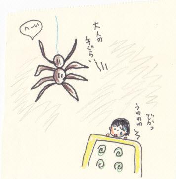 大きなクモ