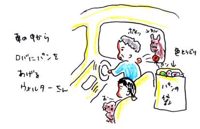 IMG_0006_20120616151927.jpg