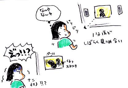 IMG_0007_20120802091614.jpg