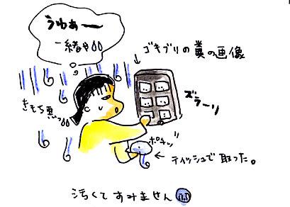 IMG_0007_20121102145702.jpg