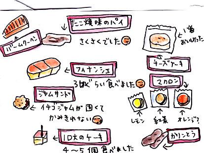 IMG_0011_20121210200508.jpg