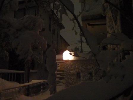 2014-02-08 08FEB14 snow 043a