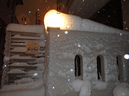 2014-02-08 08FEB14 snow 045c