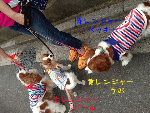 IMG_3049_2.jpg