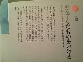 NEC_0308_s_s2.jpg
