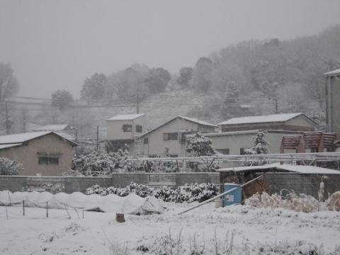 DSCN9885 雪2.8