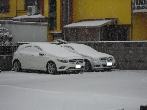 DSCN9890 雪2・8