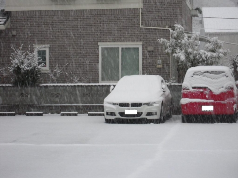 DSCN9889 雪2・8