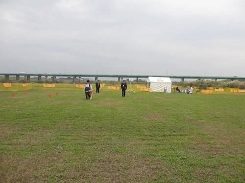 2013秋本部オビⅢ脚側