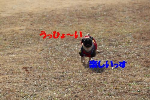 ろまんちっく村5