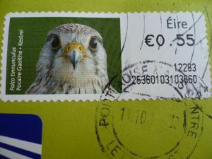 アイルランドB201210-2