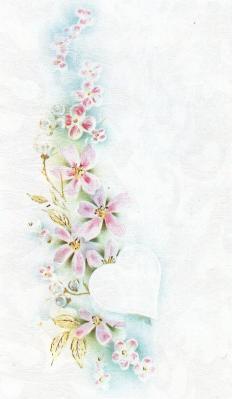 アルジェリアNから誕生日2013-1
