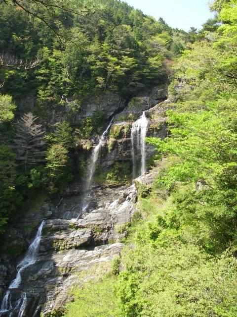 IMGP1272東滝