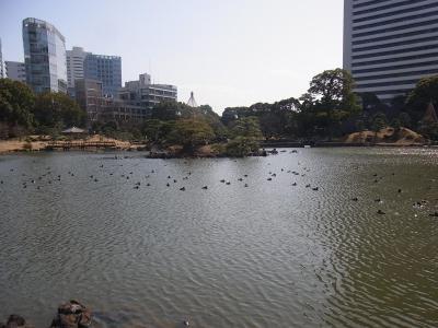 ぶらり散歩浜松町~築地~銀座 かんの (3)