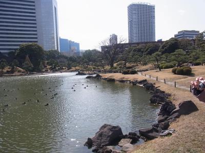 ぶらり散歩浜松町~築地~銀座 かんの (4)