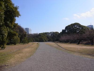 ぶらり散歩浜松町~築地~銀座 かんの (10)