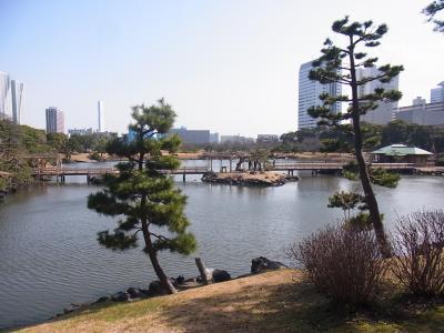ぶらり散歩浜松町~築地~銀座 かんの (11)
