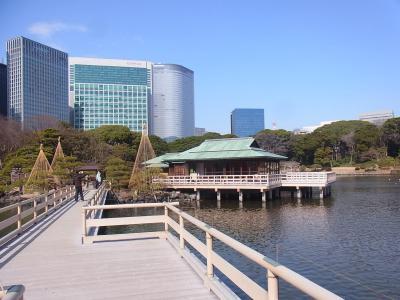 ぶらり散歩浜松町~築地~銀座 かんの (13)