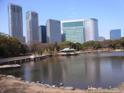 ぶらり散歩浜松町~築地~銀座 かんの (14)