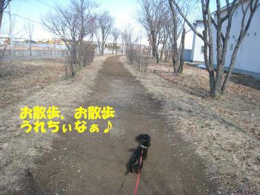 IMG_9669-3.jpg