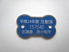 IMG_9694-2.jpg