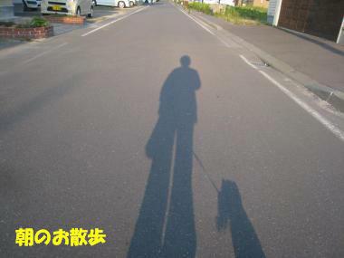 IMG_9775-3.jpg