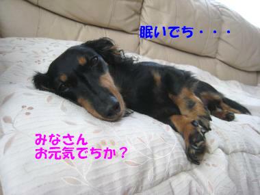 IMG_9884-3.jpg