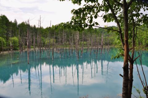 青い池3jpg