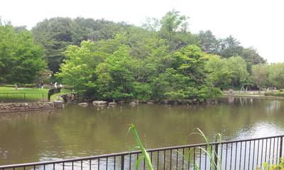 こども自然公園.2