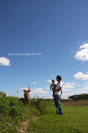 2011-09-24_4162.jpg